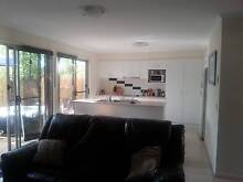 townhouse 1 room available central maroochydore Maroochydore Maroochydore Area Preview
