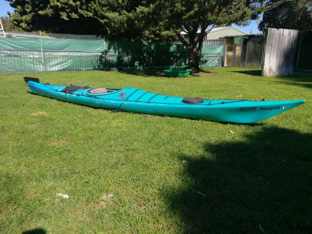 Kayak for sale 4 8m Penguin | Kayaks & Paddle | Gumtree Australia