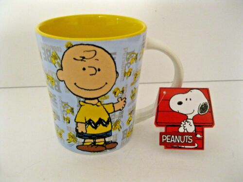 Peanuts Charlie Brown~Encouragement~Coffee Mug~NWT!