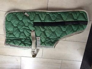 Foal rug. Great condition fully adjustable Morphett Vale Morphett Vale Area Preview