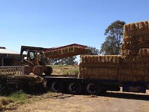 STRAW BALES for building sites