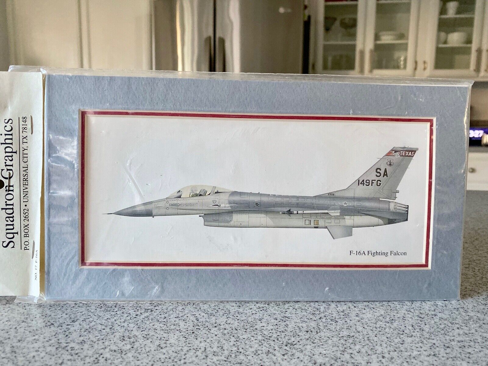 SQUADRON GRAPHICS F-16A FIGHTING FALCON  AIRCRAFT FRAMED  PRINT NEW