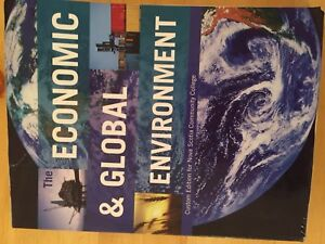 The Economic and Global Environment by Avi J. Cohen