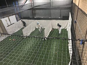 Cricket batting coaching
