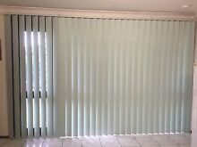 Vertical blind Metford Maitland Area Preview