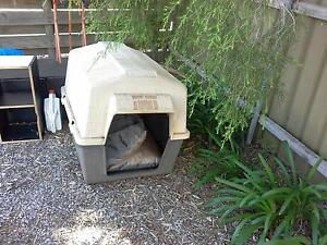 petmate large dog kennel Ridgehaven Tea Tree Gully Area Preview