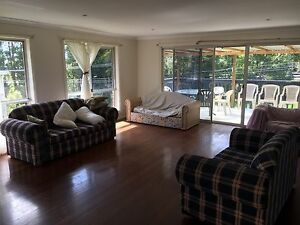 Sharehouse blueberry accomodation Woolgoolga Coffs Harbour Area Preview