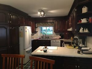 Kitchen Cabinets & Countertop