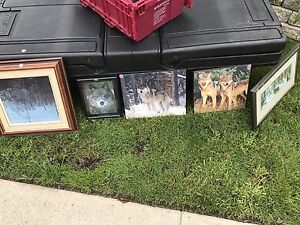 Wolf picture frames