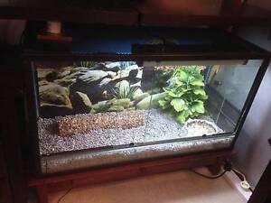 Reptile enclosure Beresfield Newcastle Area Preview