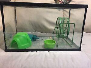 Aquarium or Reptile tank