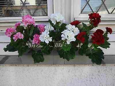 künstliche Blumen künstliche pflanzen Geranien Set x 3 Stück mit Steckschaum