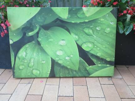 Leafy outdoor print