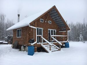 Chasse chevreuil zone 3 terre 90 acres / camp