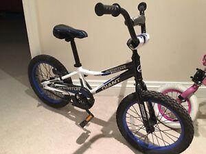 "Giant Animator 16"" kids bike"