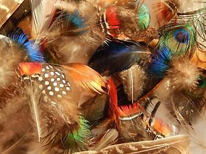 `50+ mixed bird feathers, peacock, pheasant,mandarin duck small crafts/ flytying