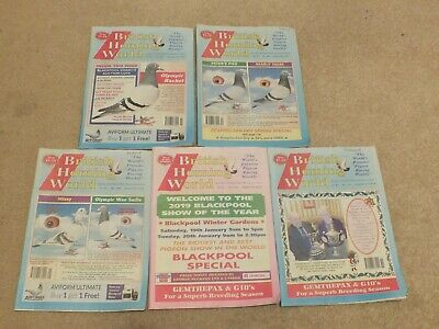 5 x British Homing World racing pigeon birds magazines back issues