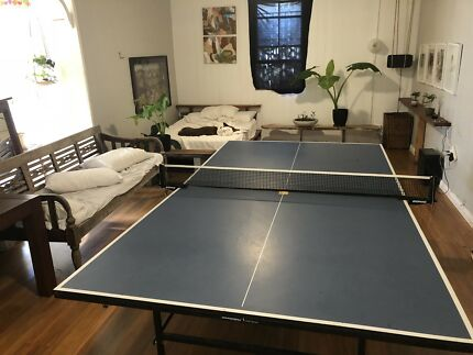 Table Tennis Partner