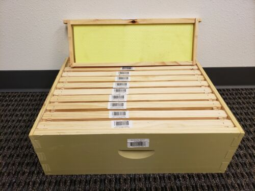 Langstroth 10 Frame Painted Medium Box w/ Frames and Foundations