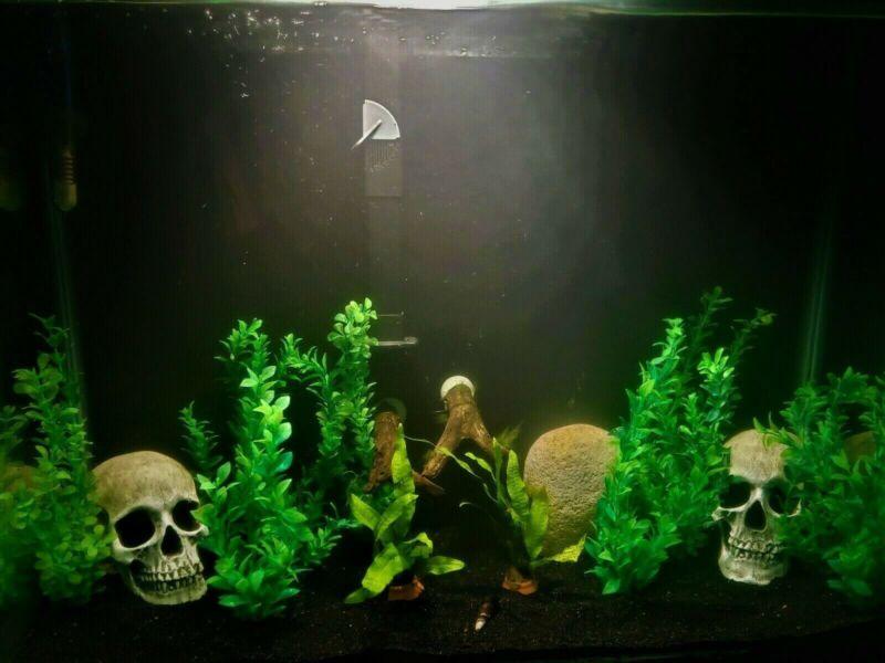 30 Pound Black Fine Sand Substrate for Aquarium Terrarium Garden  >2k lbs. sold
