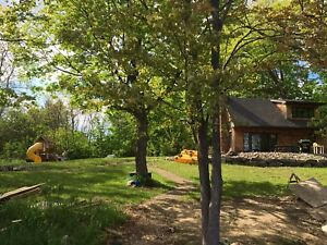 Rustic Cabin | Vacation Rentals in Ontario | Kijiji Classifieds