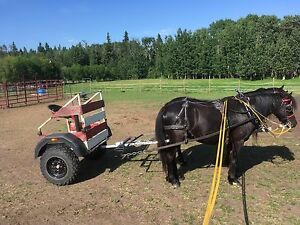 Pony Hitch Cart