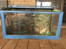 Large Reptile Tank Gawler Gawler Area Preview