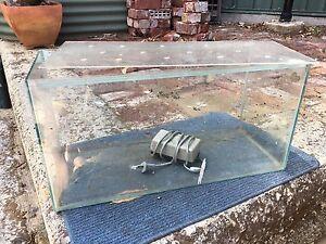 Fish tank Wembley Cambridge Area Preview
