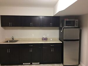 Large basement for rent in doon south