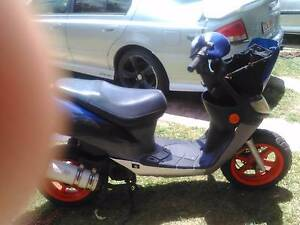 2004 scooter need gone Warwick Southern Downs Preview