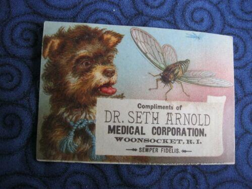 Victorian Trade Card Dr. Seth Arnold Woonsocket RI Dog & Bumblebee  Scraps 61