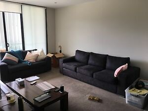 Suede couches for sale! Great condition! Maroubra Eastern Suburbs Preview