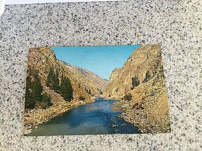 Postcard Used Idaho  Wilderness Area  North Fork Salmon River