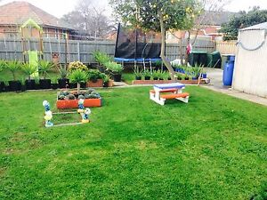 Lawn Mowing Grass cutting Green Waste Removal Maidstone Maribyrnong Area Preview