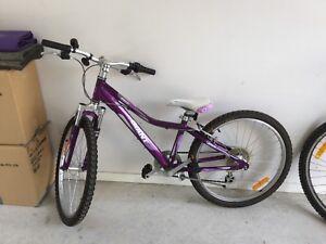 Giant Kid's bike