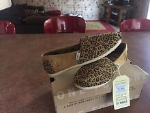Brand new toms shoes Leeming Melville Area Preview