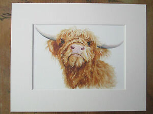 Watercolour Highland cow ( e), print, of original painting, in 10
