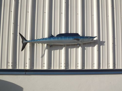 """53"""" Wahoo (Ono) Half Fish Mount Replica- 10 Business Day Production Time"""