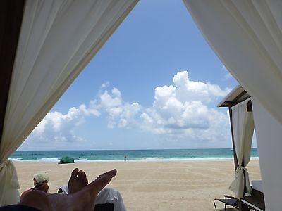 Hard Rock Hotel Punta Cana  Cancun  Vallarta  Riviera Maya  Moon Palace