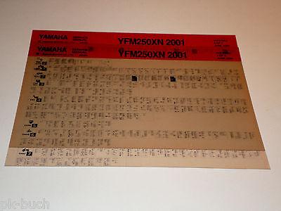 Microfich Werkstatthandbuch Yamaha Quad YFM 250 XN ab 2001 gebraucht kaufen  Groß Hauskreuz