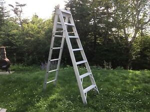 Multi Positional Ladder and Step Ladder. 12 feet in Length