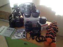 Canon 60D + 3 lenses + tripods complete pack Randwick Eastern Suburbs Preview