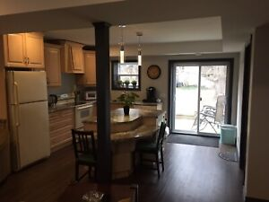 Modern 2 bedroom Apt.  1 year old!  Perfect for single Mom/Lady