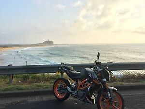 2014 KTM 390Duke. (Make an offer) Merewether Newcastle Area Preview