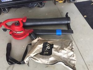 Toro Leaf Blower and Mucher