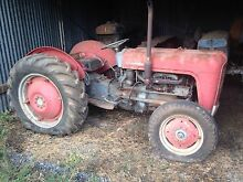 Ferguson fe35 tractor with ploughs Cabarlah Toowoomba Surrounds Preview