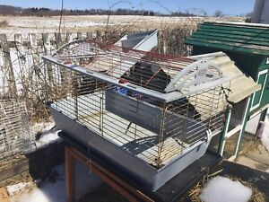 Rabbit cages for sale