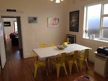 Semi Furnished Four Bed Family Home 5min walk to Beach Coogee Eastern Suburbs Preview