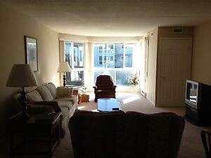 South Side Two Bedroom Furnished Apt