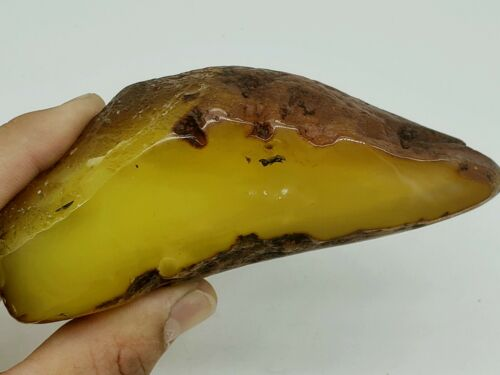 amber raw stone  225g  natural baltic rock z16